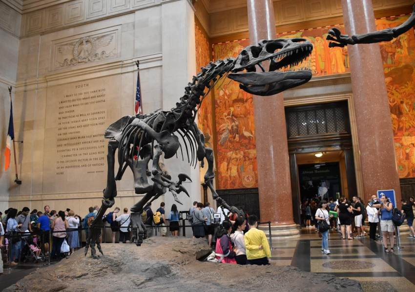 The best museums in the world, according to TripAdvisor - news of today