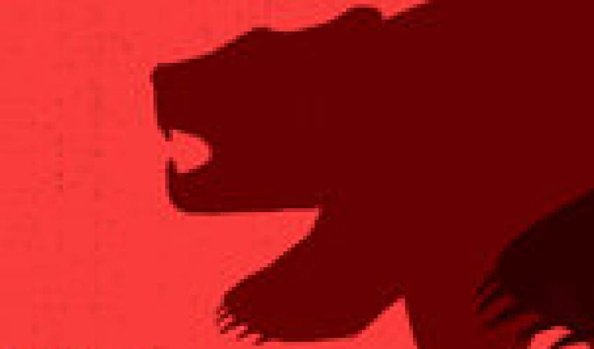 'Bear Market' Is an Arbitrary Label, but… - news of today